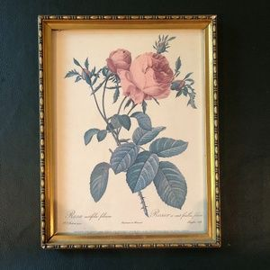 VINTAGE GOLD/BRASS FRAMED ROSE ILLUSTRATION